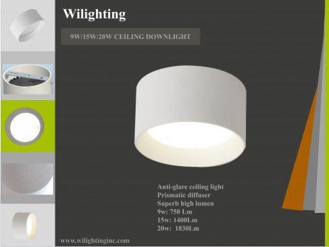 Ceiling Downlight